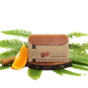 Nudi Point Exfoliating Facial Bar- Face of the Earth