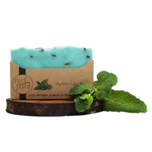 Nudi Point Body Soap – Momints like these